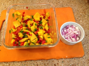 Mango Salsa with red onions on the side.